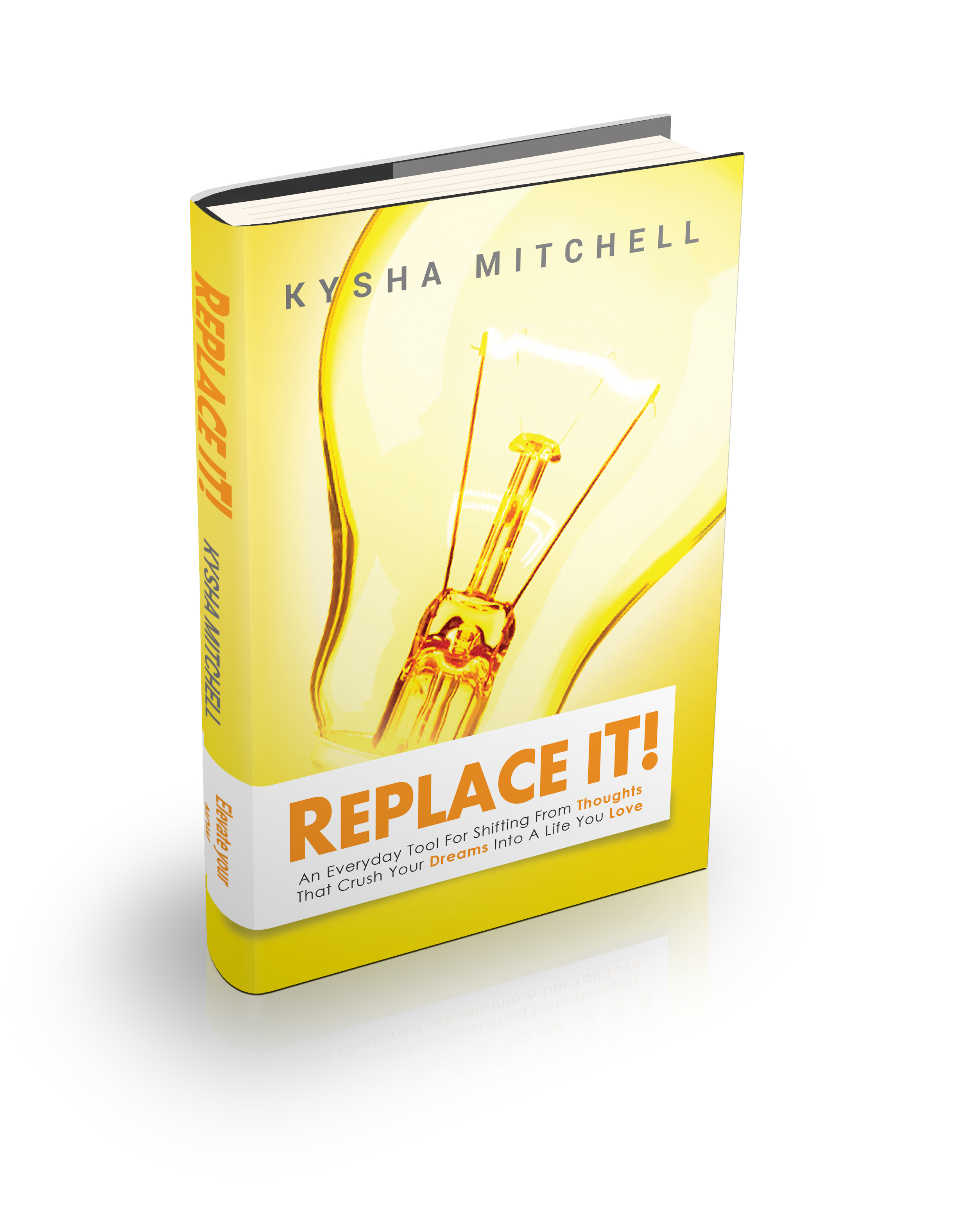 Replace it! Book cover