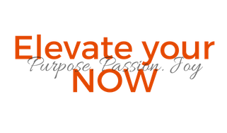 Elevate your NOW