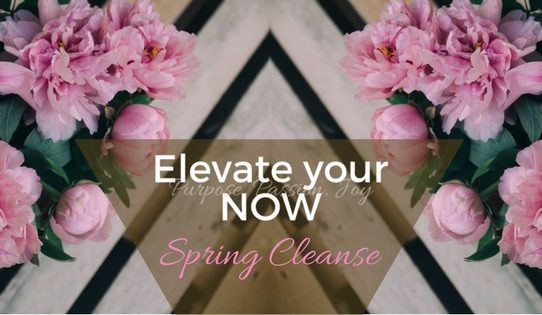 Spring cleanse cleaning